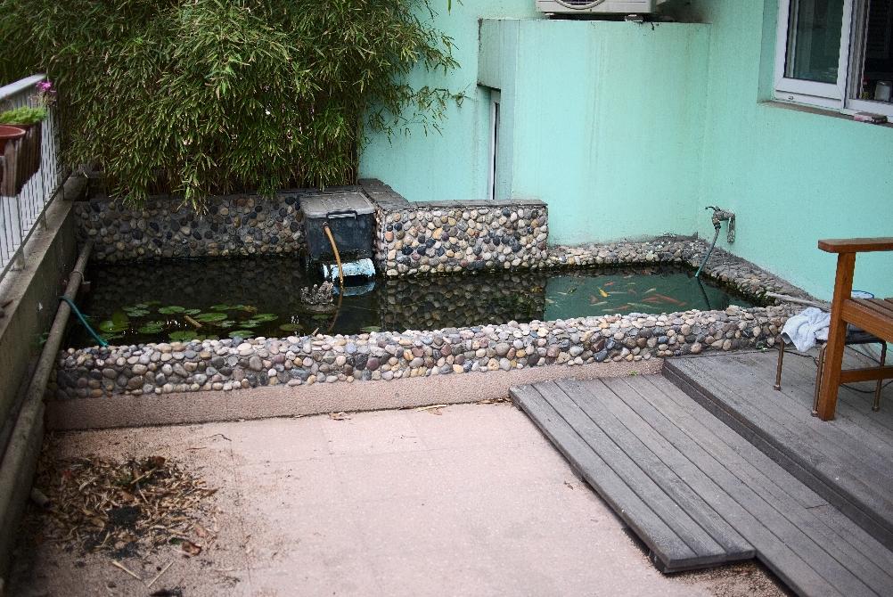 4平米小型鱼池设计图
