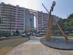 大提琴广场2